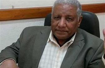 حلمي القاعود يفوز بجائزة «التميز» في النقد الأدبي