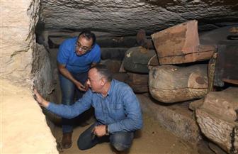 مدبولي يعرب عن سعادته بالاكتشاف الأثري الجديد بسقارة.. ويؤكد: الحضارة المصرية القديمة مبهرة|فيديو