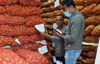 الزراعة: تتابع حقول البطاطس من الزراعة حتى التصدير وإطلاق خدمة أسس وتابع مزرعتك | صور