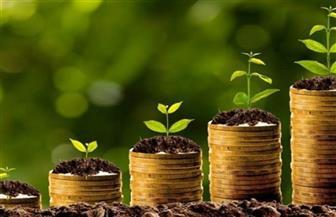 بعد نجاح طرح الـ750 مليونا.. 40 مشروعا على أجندة الحكومة لـ«السندات الخضراء»