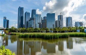 مدينة شنتشن.. خير مثال على السياسة الحكيمة للإصلاح والانفتاح في الصين