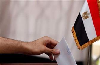 المصريون فى الكويت والسعودية والبحرين والأردن يواصلون التصويت لليوم الثاني على التوالي