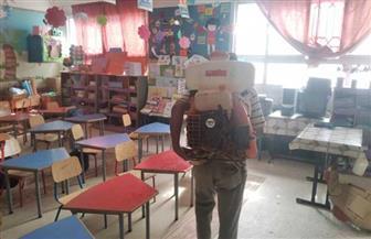 تطهير 9 مقرات انتخابية استعدادا لانتخابات النواب بمدينة مطروح | صور