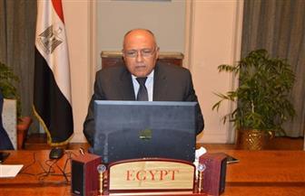 وزير الخارجية يتوجه إلى دولة الكويت حاملا رسالة من الرئيس السيسي