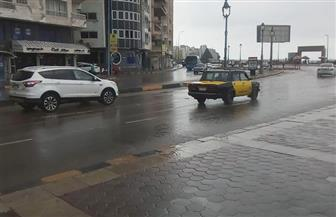 أمطار متوسطة الشدة على الإسكندرية.. وطوارئ بالمحافظة لمواجهة الطقس السيئ| فيديو وصور