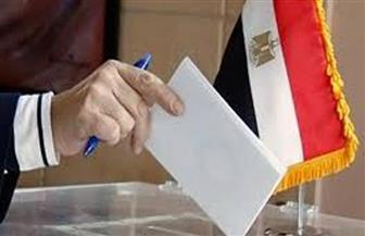 """تبدأ صباح غد.. شروط وخطوات التصويت في انتخابات """"النواب"""""""
