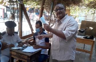 توزيع كمامات على الناخبين بلجان أسوان | صور