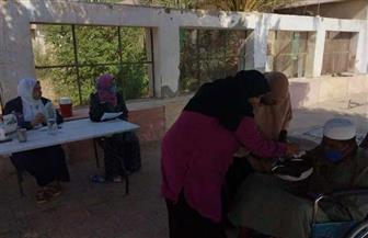 مترجم لغة إشارة في كل لجنة انتخابية لمساعدة الحالات الخاصة بسفاجا | صور