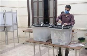غلق اللجان الانتخابية بمقرات الفيوم