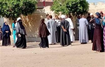 استمرار توافد المواطنين للمشاركة في انتخابات مجلس النواب بفيصل | صور