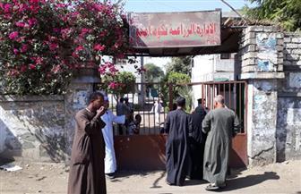 كبار السن والسيدات يتصدرون مشهد التصويت في انتخابات النواب بأسوان