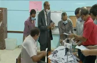 """""""بيان إحصائي"""": 24.5% نسبة المشاركة في دائرة محافظة أسيوط"""