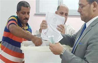 حصر عددي.. تقدم يونس عبدالرازق وعصام عبدالغفار في لجان بلطيم بالدائرة الثالثة بكفر الشيخ