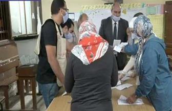 بيان إحصائي بعدد الأصوات الصحيحة في 8 لجان فرعية بمدرسة أنس بن مالك بالجيزة