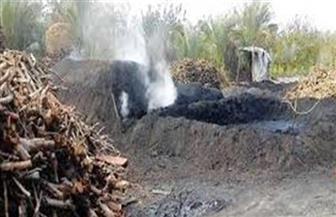 إزالة مكمورتي فحم في دمياط لمخالفتهما الاشتراطات البيئية