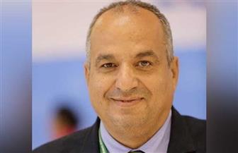 رئيس قطاع المحميات الطبيعية يوضح لـ«بوابة الأهرام» أنواع أسماك القرش في مصر وأشرسها