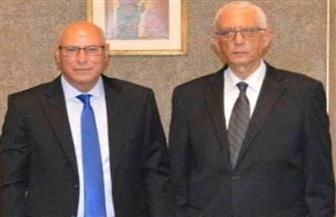 """الجامعة العربية تشيد بدور الخارجية المصرية في انتخابات """"النواب"""" بالخارج"""