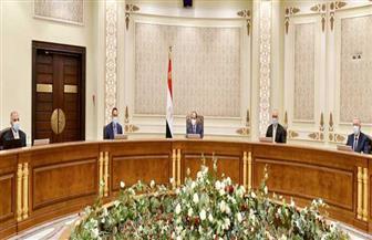 الرئيس السيسي يستعرض الخطوات التنفيذية لإنشاء محطات معالجة مياه الصرف الزراعي