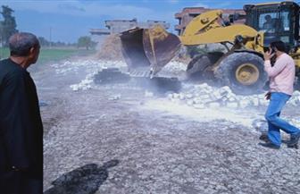 إزالة 17 حالة تعد على الأراضي الزراعية في دمنهور| صور