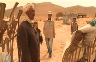 البدو الرحل في الجزائر يبدأون التصويت على تعديلات الدستور