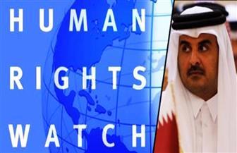 """"""" بأموال إخوانية"""".. هيومان رايتس ووتش"""" تفبرك تقارير حول مصر لوقف صفقات الأسلحة إليها"""