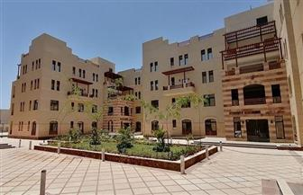 جامعة الملك سلمان تتزين للانطلاق.. منارة الإشعاع العلمي والحضاري بأرض الفيروز| صور