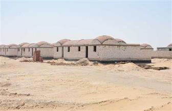 الزملوط: ٣ قرى نموذجية لشباب الوادى الجديد كاملة المرافق | صور