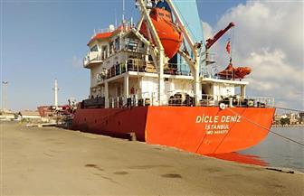 تداول 29 سفينة وتفريغ 5500 طن رخام بموانئ بورسعيد  صور