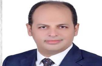"""نائب بـ""""الشيوخ"""": حرب أكتوبرالمجيدة أحد ملاحم التاريخ المصري"""