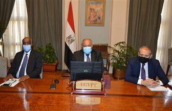 سامح شكري: أمامنا فرصة مثالية للتوصل إلى تسوية سياسية تراعي كافة جوانب الأزمة الليبية