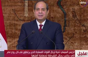 الرئيس السيسي: ذكرى نصر أكتوبر المجيدة ستبقي عيدا لكل المصريين تخليدا لقوة إرادتهم وصلابتهم
