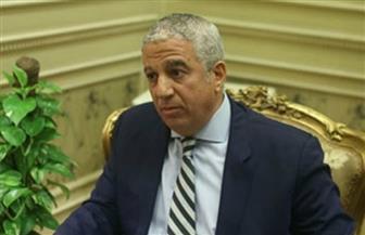 رئيس خارجية النواب: دعم دولي لمصر في مياه النيل.. وإدراج الإخوان كجماعة إرهابية على رأس أولوياتنا