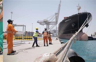 ميناءي السخنة والأدبية يشهدان زيادة كبيرة في أعداد السفن وتداول الحاويات | صور