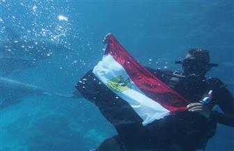 الدرافيل تجمعت حول علم مصر.. شاهد الاحتفال بانتصار أكتوبر تحت مياه البحر الأحمر بالغردقة | صور