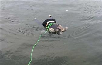 العثور على جثة شاب طافية في مياه ترعة الإسماعيلية بالقليوبية