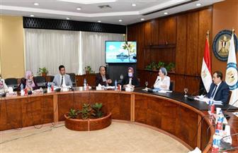 وزيرا البترول والبيئة يشاركان في اجتماع اللجنة العليا للتوافق والإصلاح البيئى