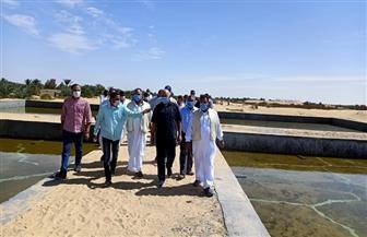 وزير الري يتفقد مشروعات الصرف الزراعي بواحة سيوة| صور