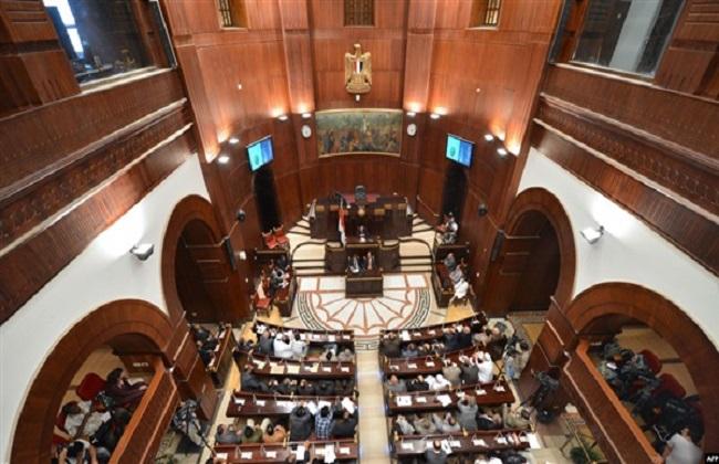 مجلس الشيوخ ينكّس العلم حدادًا على وفاة المشير طنطاوي