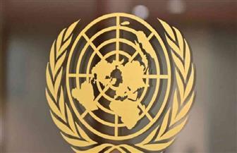 الأمم المتحدة: ولادة جنين ميت كل 16 ثانية في العالم والنسبة الأكبر لدى الفقراء
