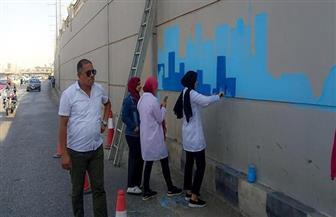 بدء مبادرة شبابية لتجميل الجدران بالمنصورة |صور