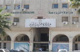 ملخص لأهم أنشطة الزراعة في مصر خلال أسبوع