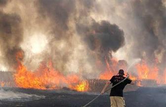 حرائق ضخمة في مناطق متفرقة من إسرائيل.. ونتنياهو يدرس طلب مساعدة دولية