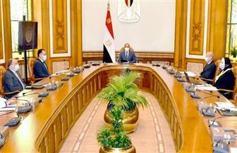 الرئيس السيسي يوجه بتوفير كافة مستلزمات الإنتاج لمدينة دمياط للأثاث
