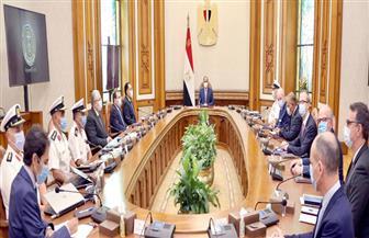 """الرئيس السيسي يستعرض المشروعات الحالية والمستقبلية لشركة """"ديمي"""" في مصر"""
