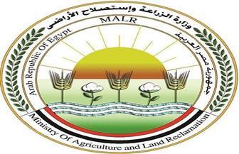 الحصاد الأسبوعي لأنشطة وزارة الزراعة في أسبوع   إنفوجراف وفيديو