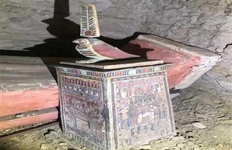 غدا.. السياحة والآثار تعلن عن كشف آثري جديد بمنطقة آثار بسقارة| فيديو وصور