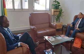 سفير مصر يبحث مع وزير الأشغال والإسكان الموزمبيقي تعزيز التعاون المشترك |صور
