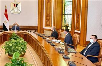 الرئيس السيسي يتابع المشروعات القومية لشركة «تنمية الريف المصري الجديد» | فيديو