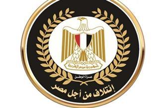 """تعيين أيمن الراوي عضو لجنة مكافحة التطرف والإرهاب بائتلاف """"من أجل مصر"""""""