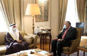 شكري: الفترة القادمة ستشهد مزيدا من التعاون بين مصر والبرلمان العربي